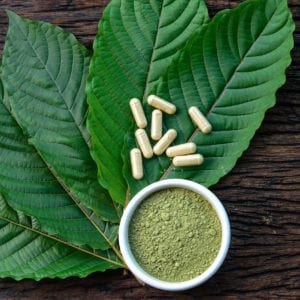 Mitragyna speciosa or kratom leaves in capsules and powder in white ceramic bowl and wooden table, top view